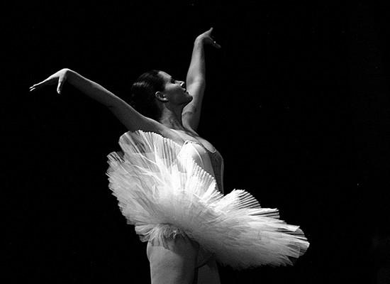 Scuola Danza Alessandria